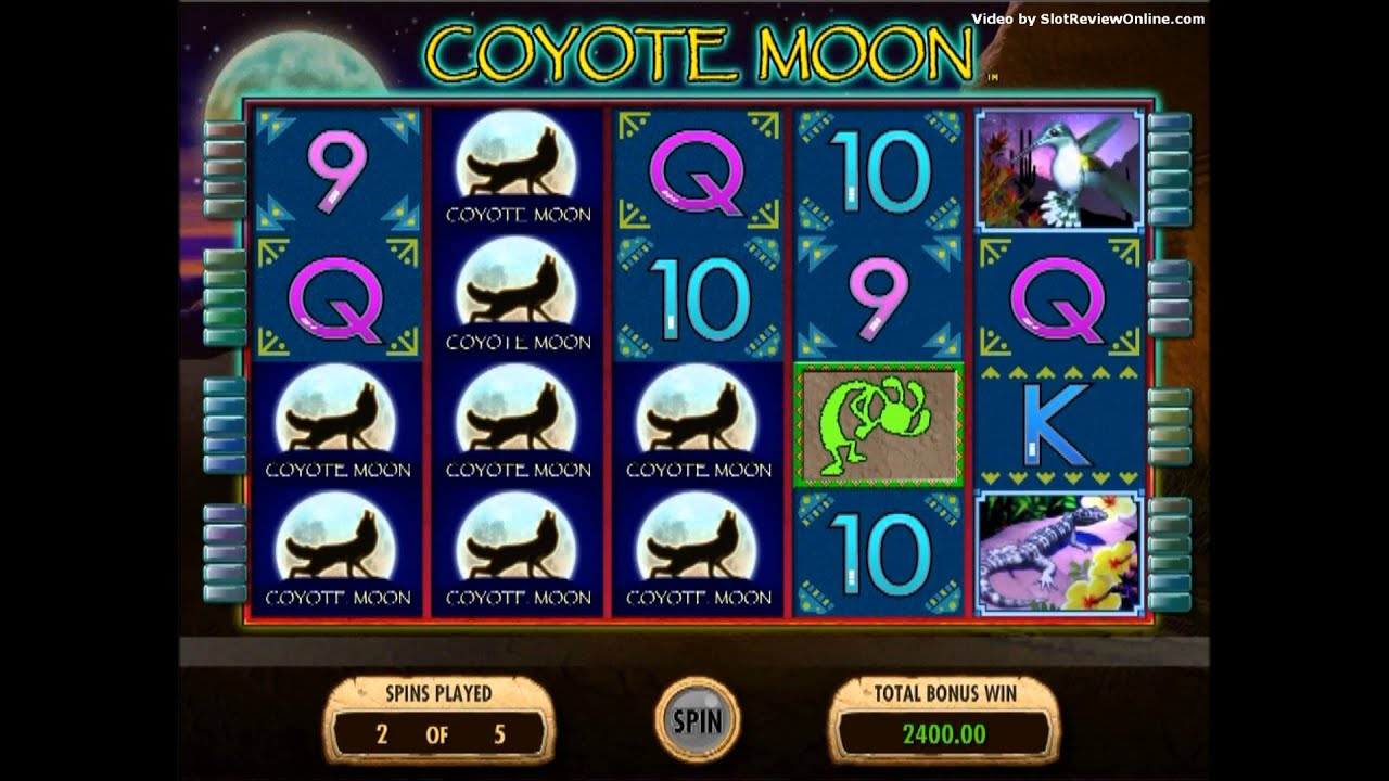Slots machines games free - 24436